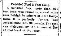 Petrified Foot