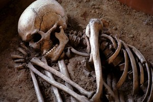 Origin of Death Found in Genesis